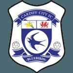 ข้อมูลทีม Cardiff City