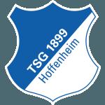 ข้อมูล ทีม สโมสร ฮอฟเฟ่นไฮม์ Hoffenheim  บุนเดสลีกา
