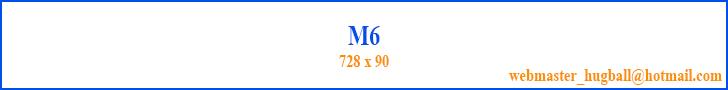 banner M6